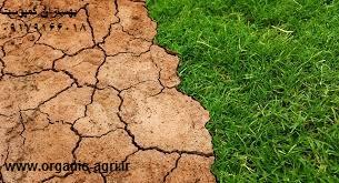 Photo of کود کمپوست راهی برای کاهش فرسایش خاک