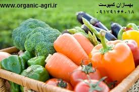 کاهش مصرف آب در کشاورزی